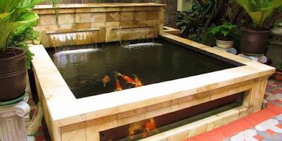 kolam ikan dalam rumah bikin hoki