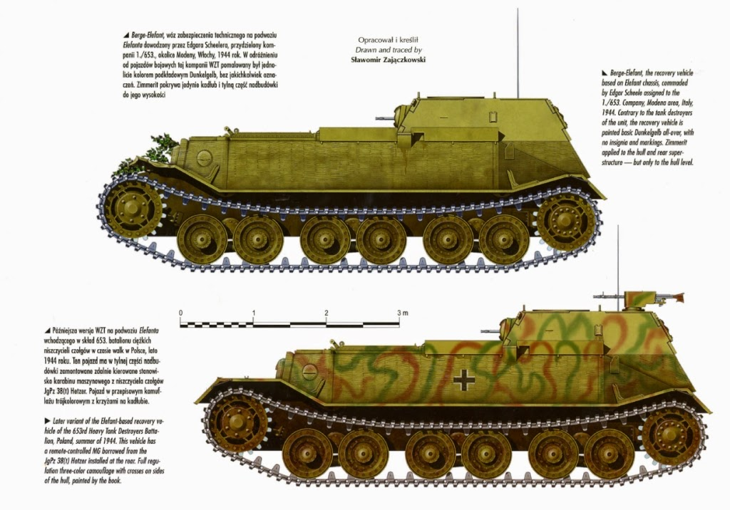 Axis Tanks And Combat Vehicles Of World War Ii