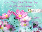 28-02-2019 Special Mention Winner
