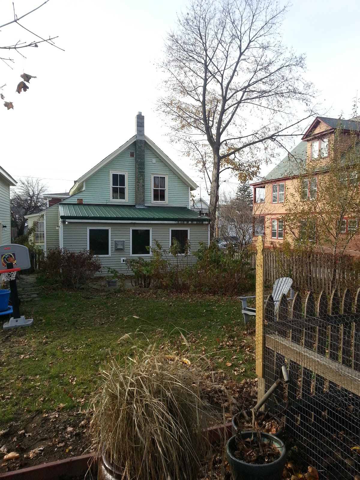 230 North Willard St.: The Backyard as Urban Farm Oasis - photo#19