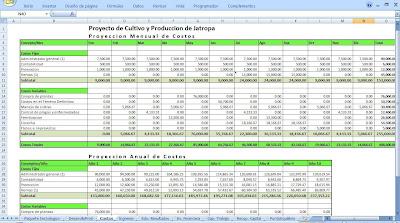 costos proyecto jatropha