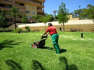Jardinería Málaga