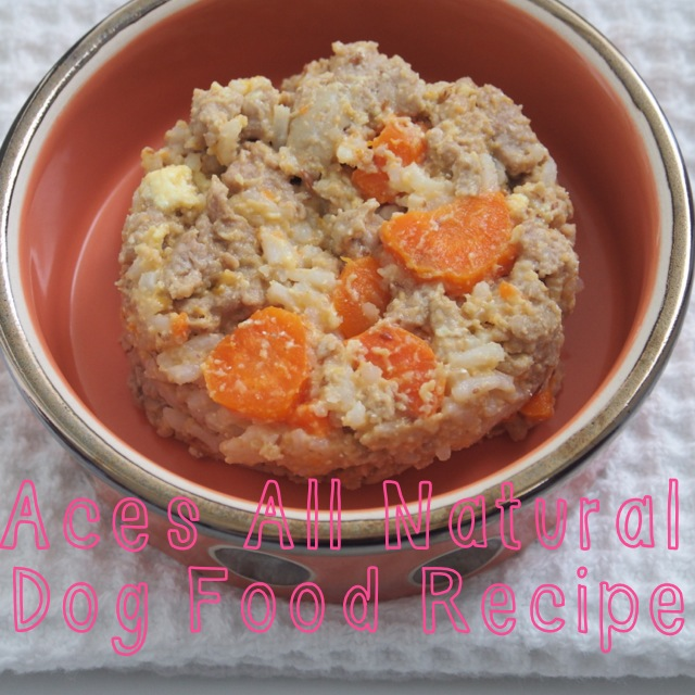 typical domestic babe organic homemade dog food recipe