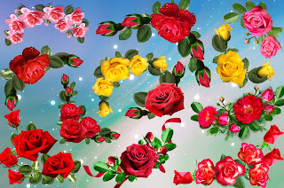 Very Beautiful Roses png format for Designing new