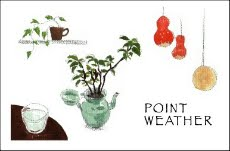 - POINT WEATHER -