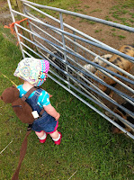 Meeting the piglets at Farmer Palmers