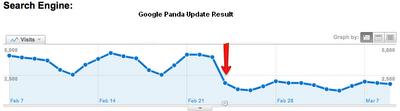 Google Panda result