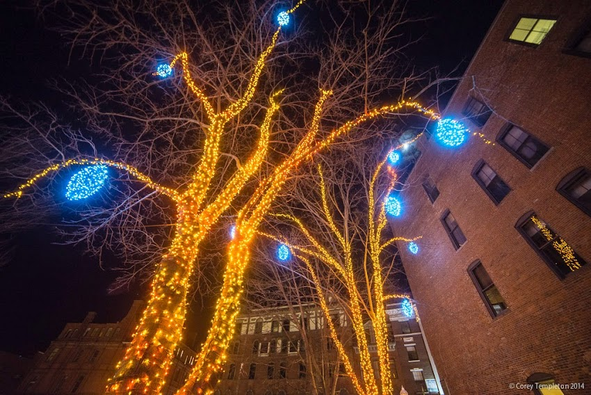 Portland, Maine Tommy's Park Old Port Winter Holiday Lights December 2014 Photo by Corey Templeton