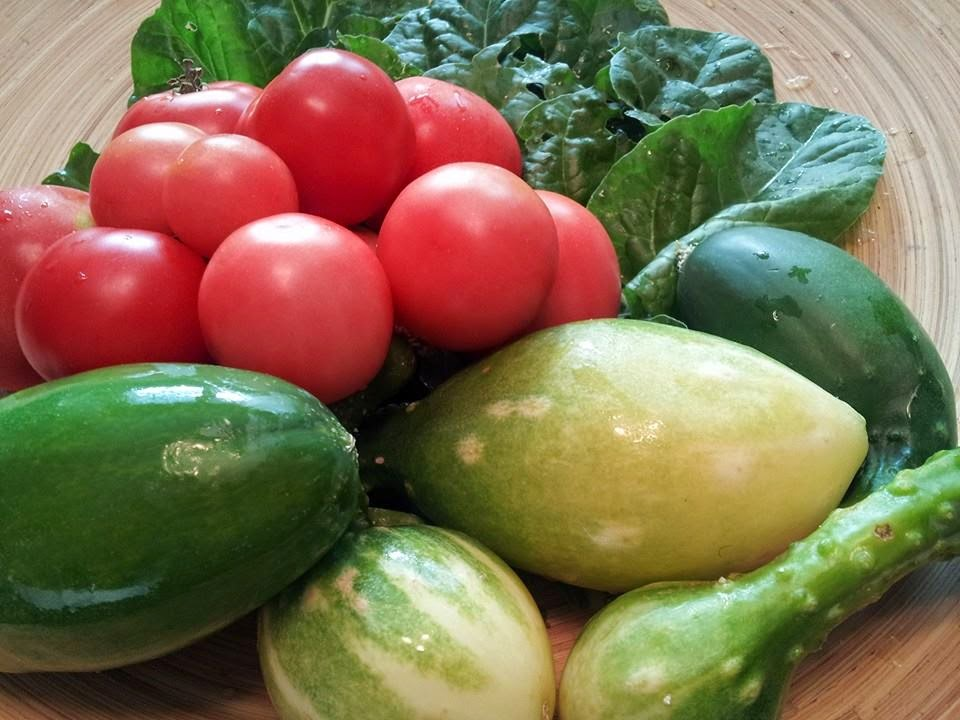 Autumn vegetable harvest, tomatoes, cucumbers, swiss chard, organic vegetables, vegetable garden