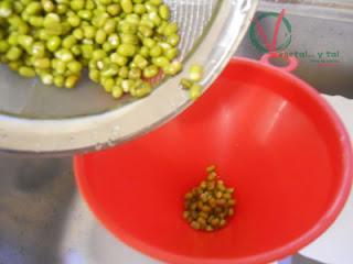 Meter las semillas remojadas en el tetrabrick.