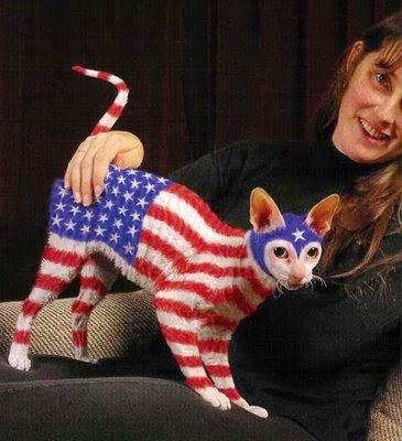 Gosta de gatos?