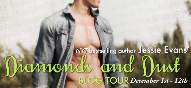 Blog Tour: Book Spotlight – Diamonds and Dust by Jessie Evans