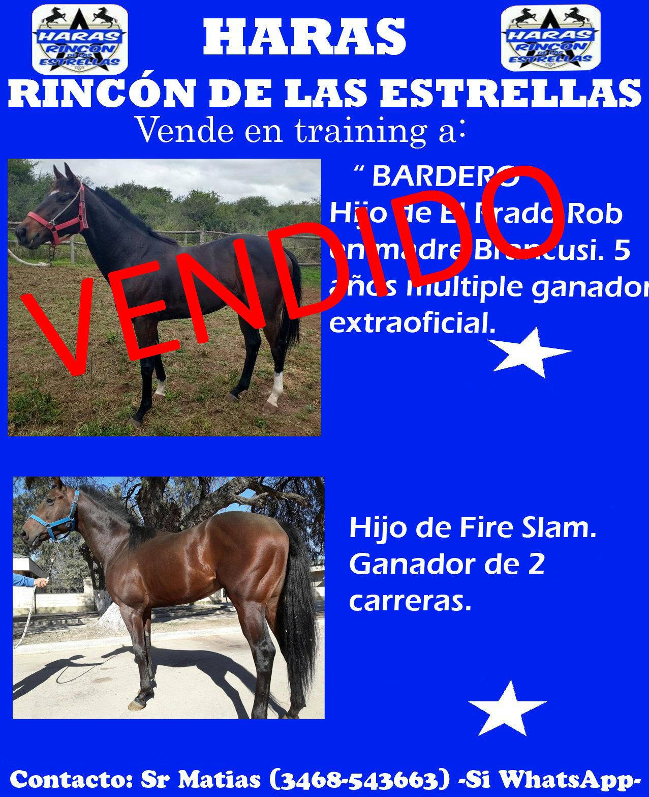 HS RINC ESTRELLAS 3