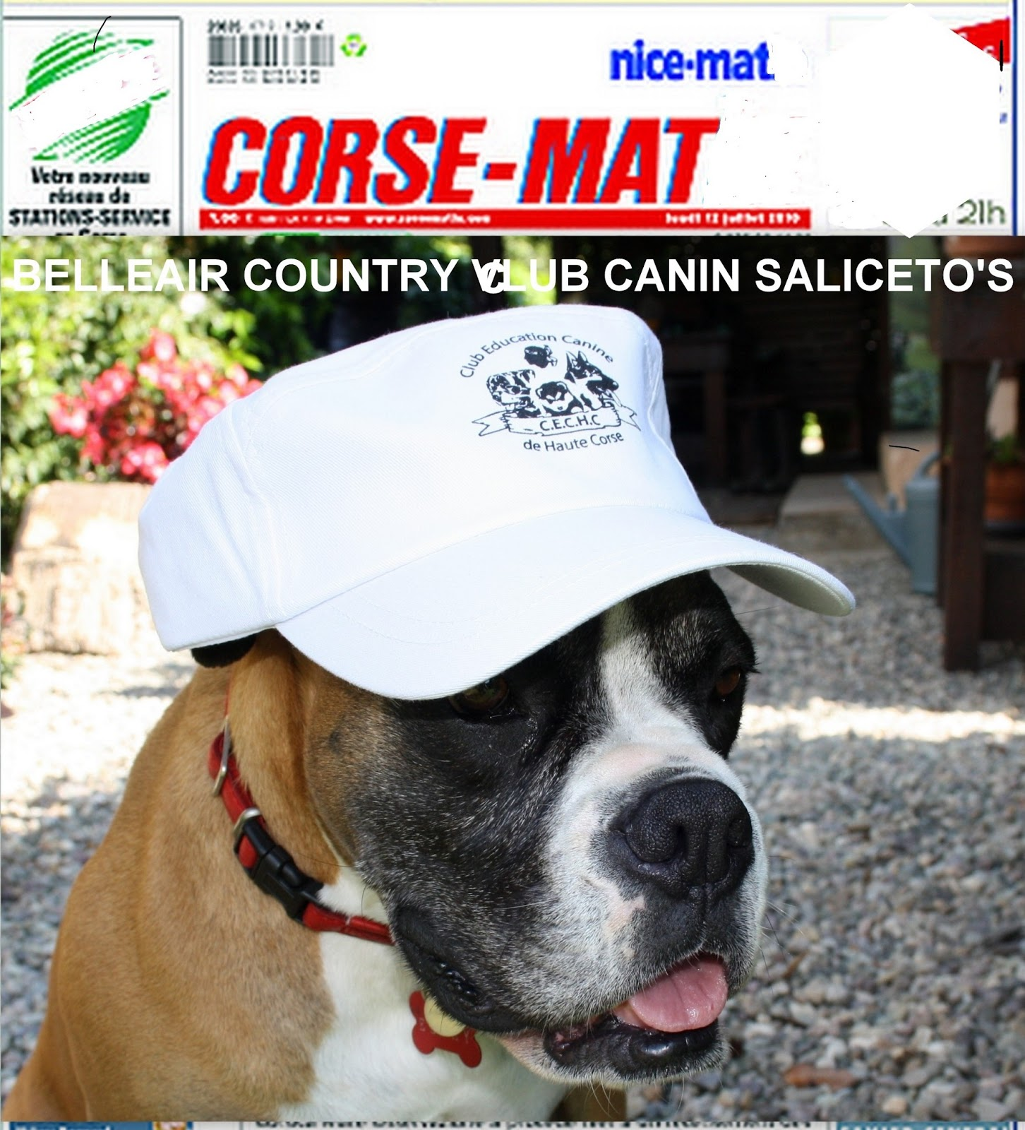 club canin corse
