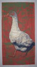 'Duck8'