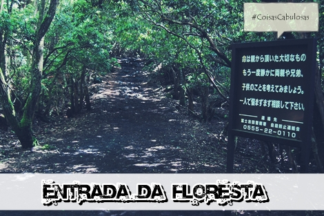 floresta do japão