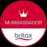 Britax Ambassador