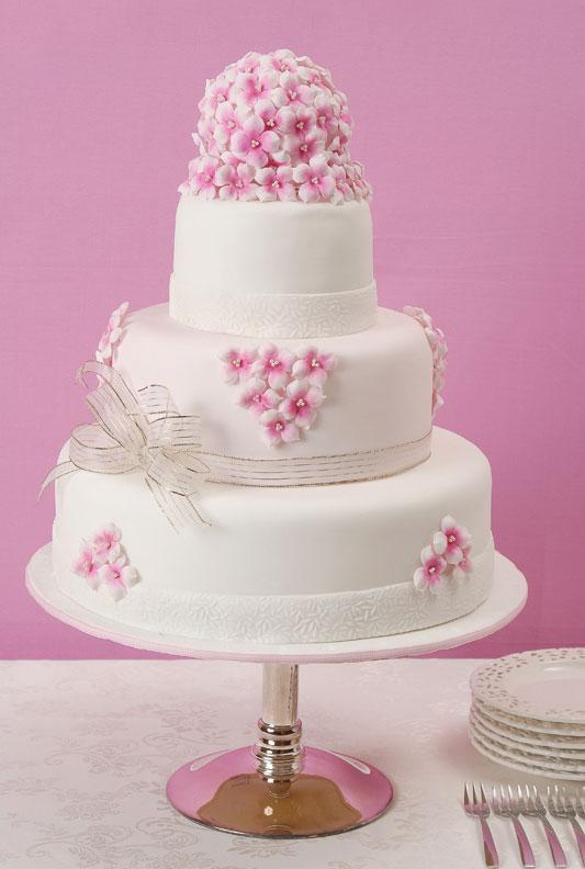Simples perfeita bolo para 15 anos oii meninas bom se voc esta perto de completa 15 anos e no sabe como vai ser o bolo a clarissa vai da umas dicas e mostra umas fotos tambm afinal thecheapjerseys Choice Image