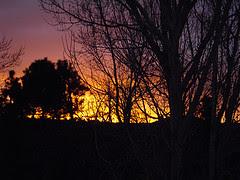 A December Sunrise