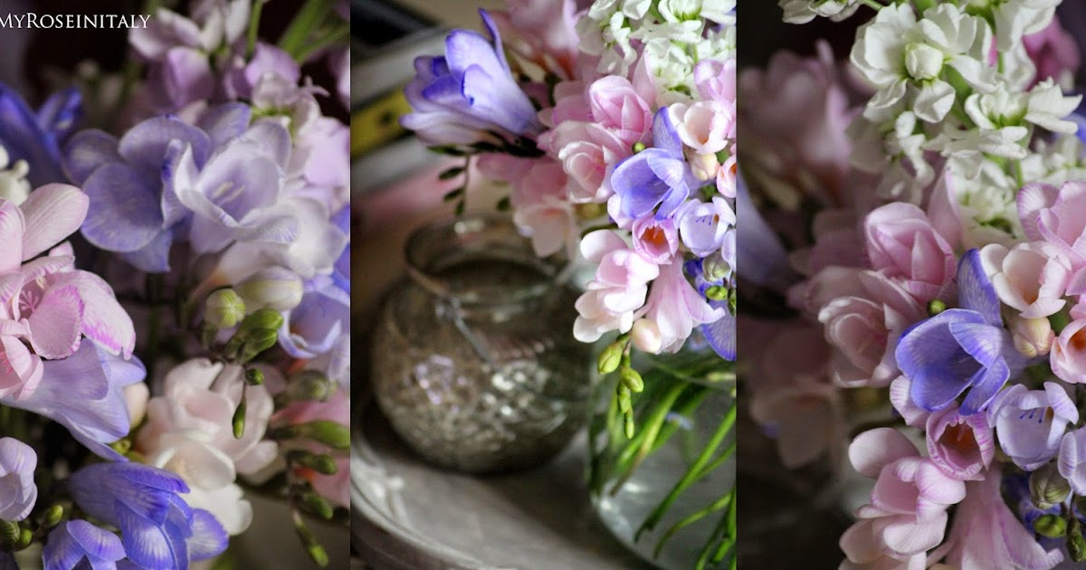Immagini fiori primaverili for Immagini sfondo desktop primavera