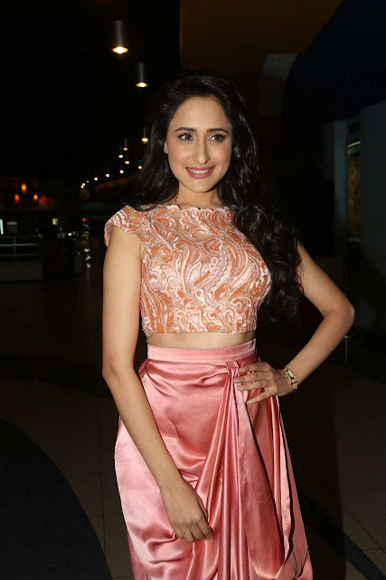 Sexy Pragya Jaiswal Latest Photos In Kanche Trailer Launch