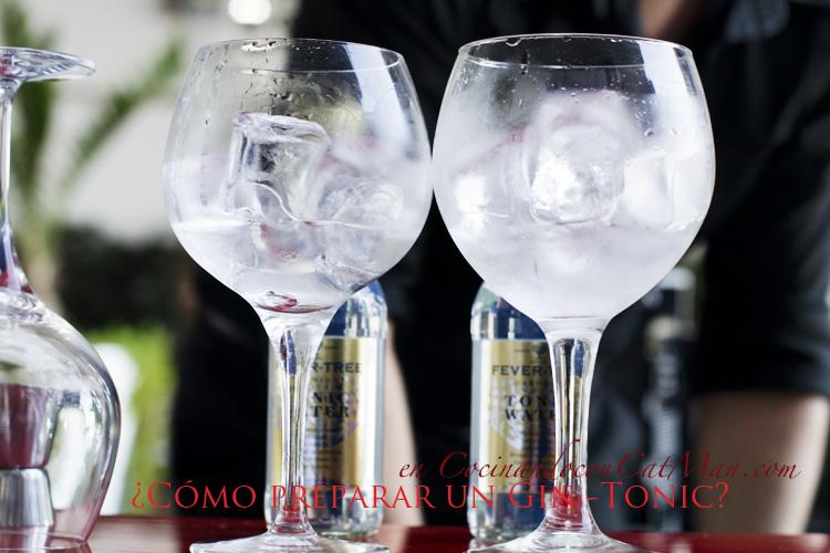 trucos para preparar un buen gin tonic