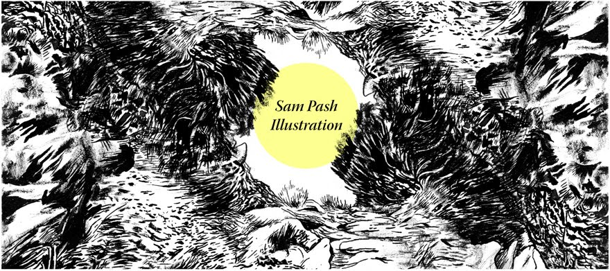 Sam Pash Illustration