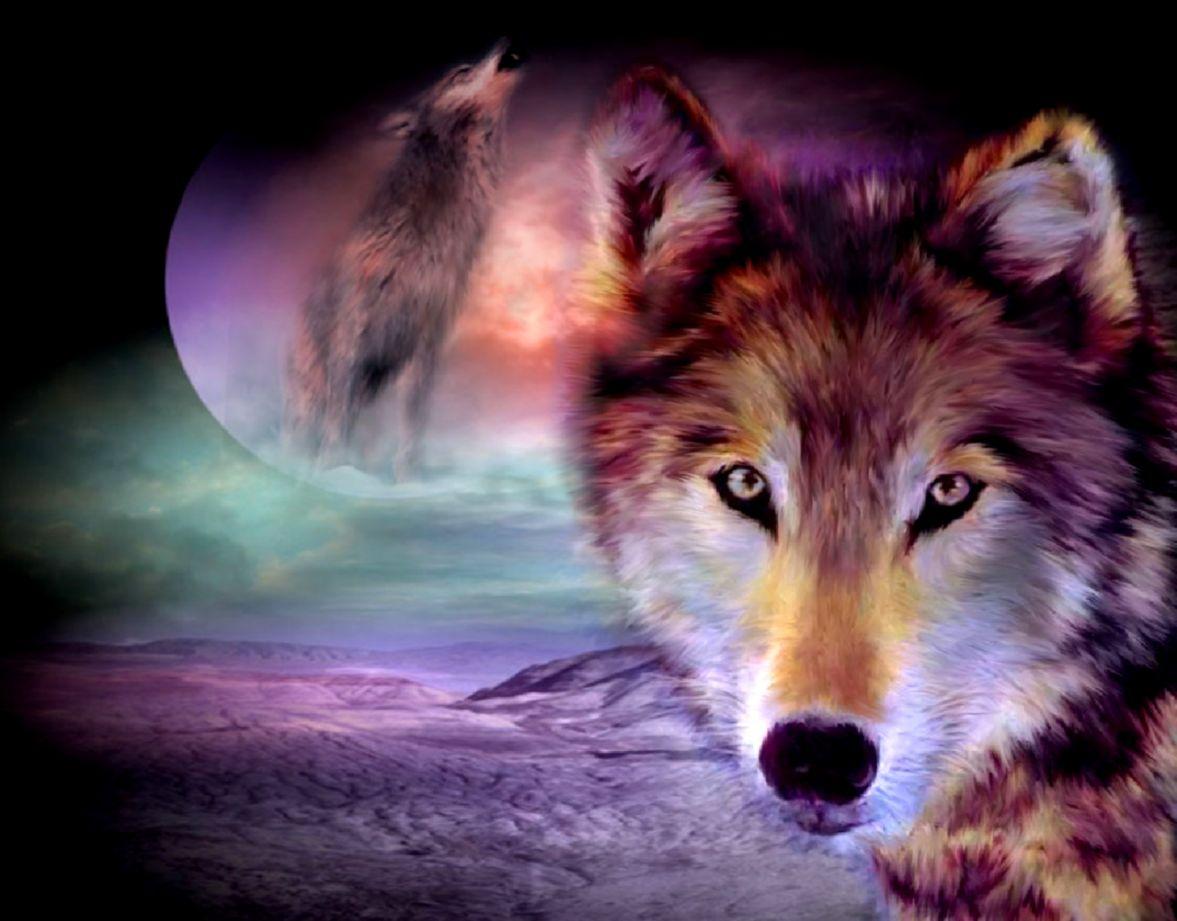 Wolf Wallpaper Desktop