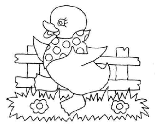 Desenhos Para Colorir Pintinhos e Patos