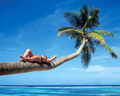 Dissertation vacations