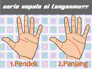 Garis tangan, garis kepala, telapak tangan