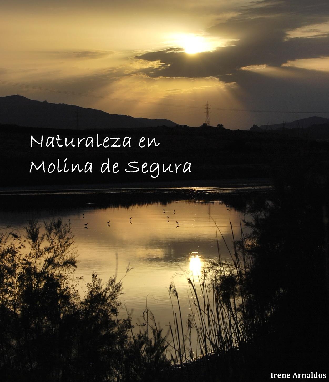 Naturaleza en Molina de Segura en Facebook