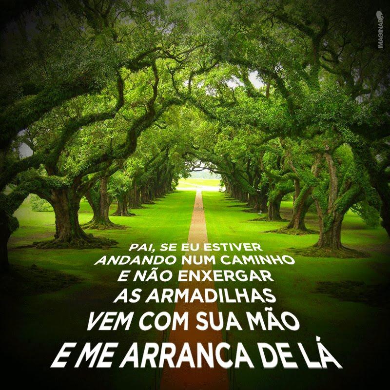 BLOGG DE SERGIO VIANNA, AS MELHORES DO ANO !!!