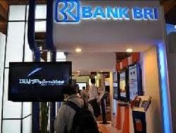 lowongan kerja bumn bank bri 2011