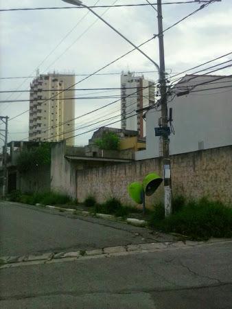 Dona Ana Flora Pinheiro de Souza.