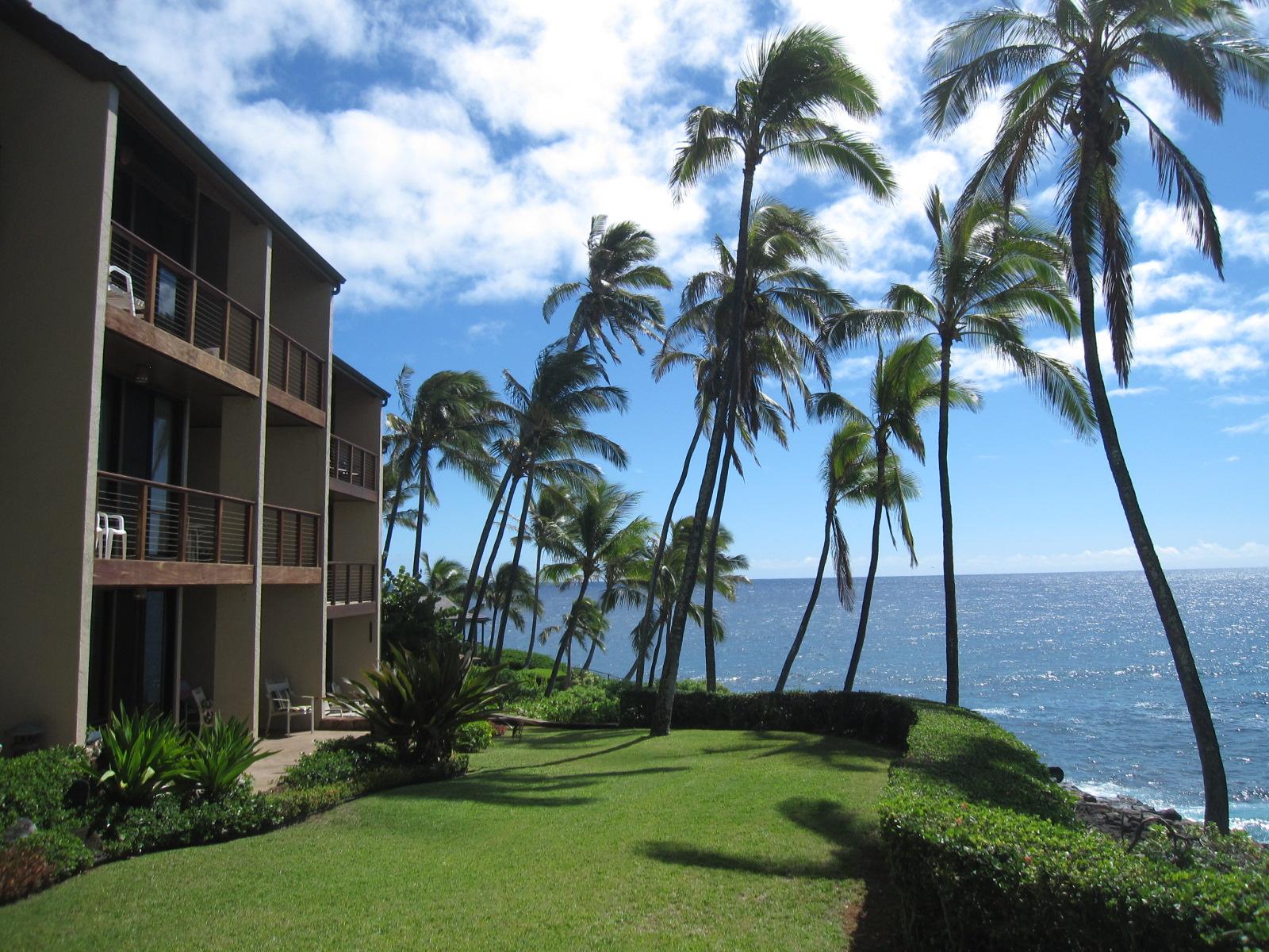 kauai real estate for sale poipu koloa kauai condos for