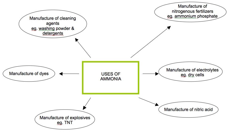 Chemistry Assignment Ammonia