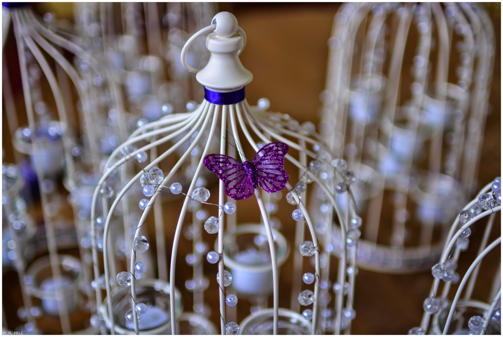 Butterfly On Birdcage Centerpieces