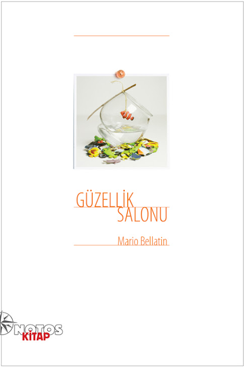 Güzellik Salonu/El Salon de Belleza, Mario Bellatin
