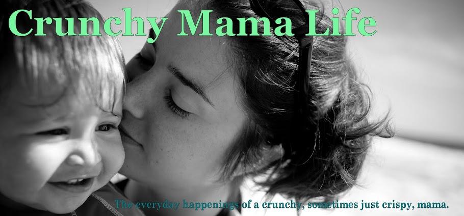 Crunchy Mama Life