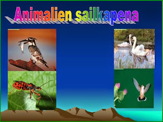 http://www.slideboom.com/presentations/222594/ANIMALIEN-SAHILKAPENA--ASIER