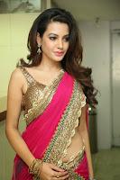 Deeksha Panth Sexy Image in Pink Half-Saree
