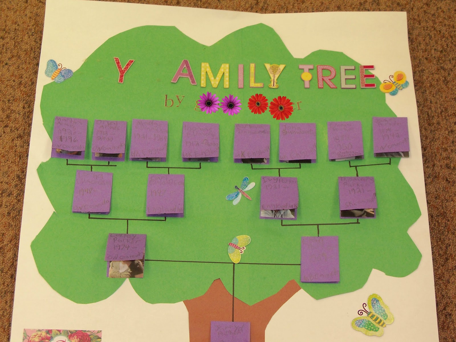 3 4 cluster webpage at home project family tree