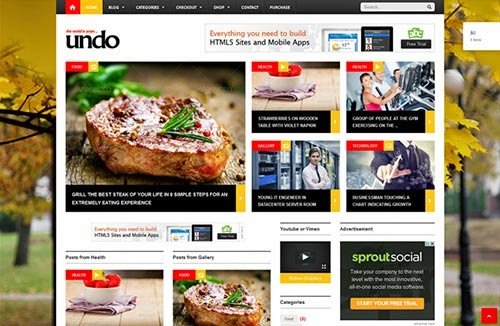 WordPress Premium Themes 2014