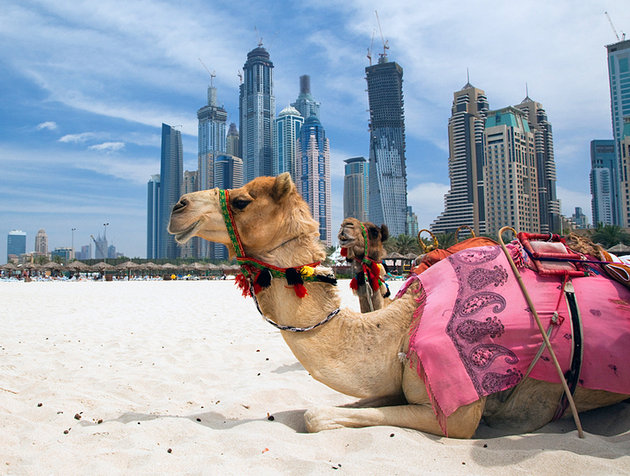Tourist Attractions In United Arab Emirates