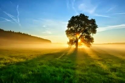 manfaat matahari bagi kesehatan,energi matahari dalam kehidupan sehari-hari,energi matahari bagi manusia,panas matahari,panas matahari bagi mahluk hidup,sumber energi matahari,