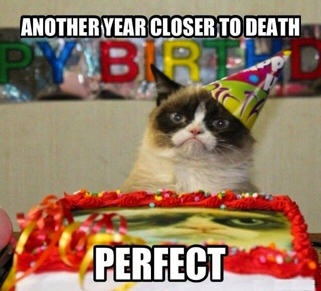 birthday-meme-another-year-closer-to-death