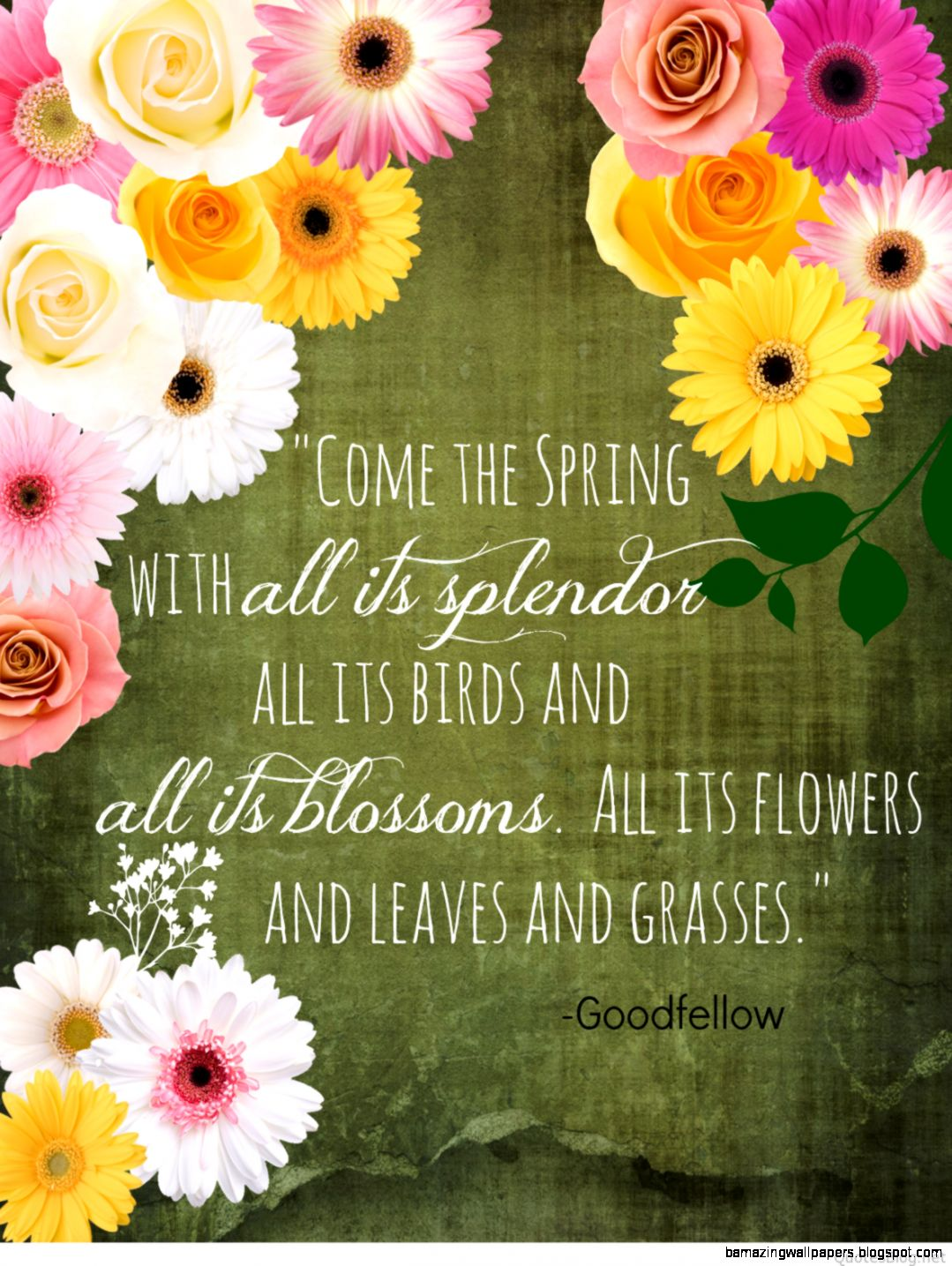 spring quotes inspirational  My Daily Knowledge