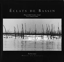 Eclats de Bassin
