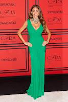 Sofia Vergara strikes a pose at 2013 CFDA Fashion Awards red carpet